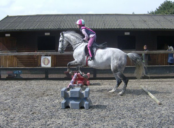 Horse Riding Lessons - Pakefield Riding School